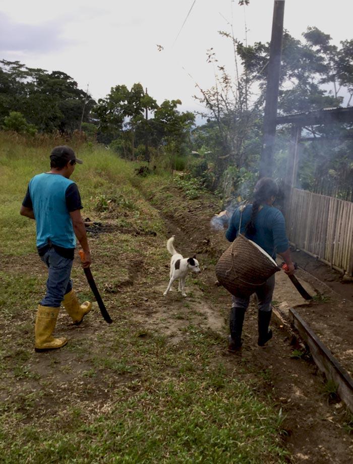 YHUlife_Rita and Wilson Amazon cacao farmers